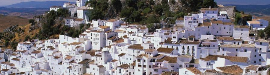 cbmp-white-village-resized